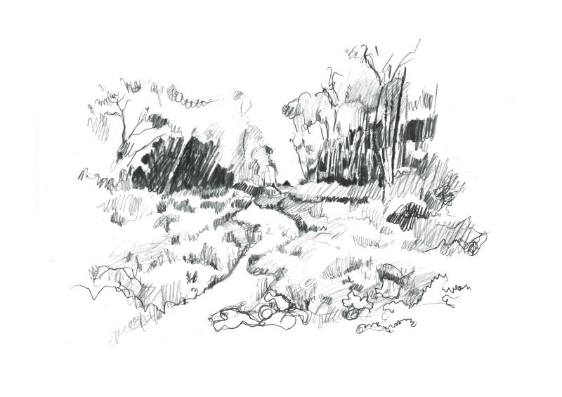 jardin des cistes