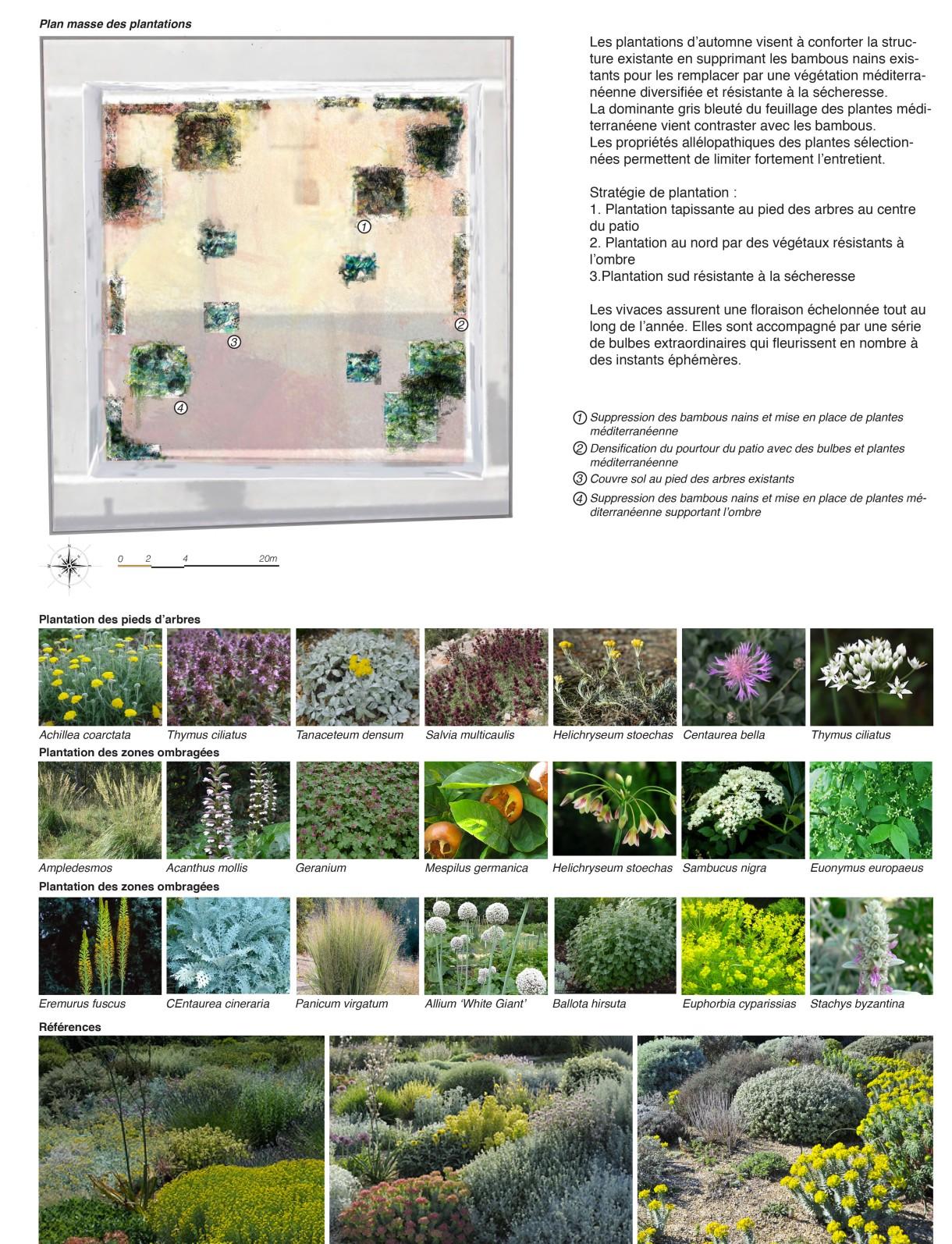 plantations automnales