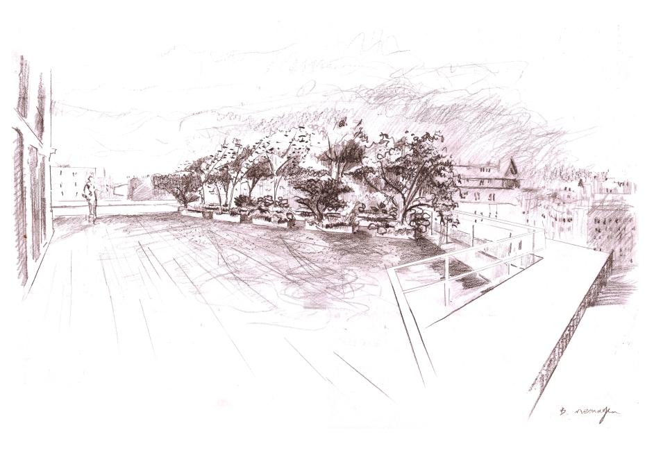 terrasse-du-conseil-gris-copie