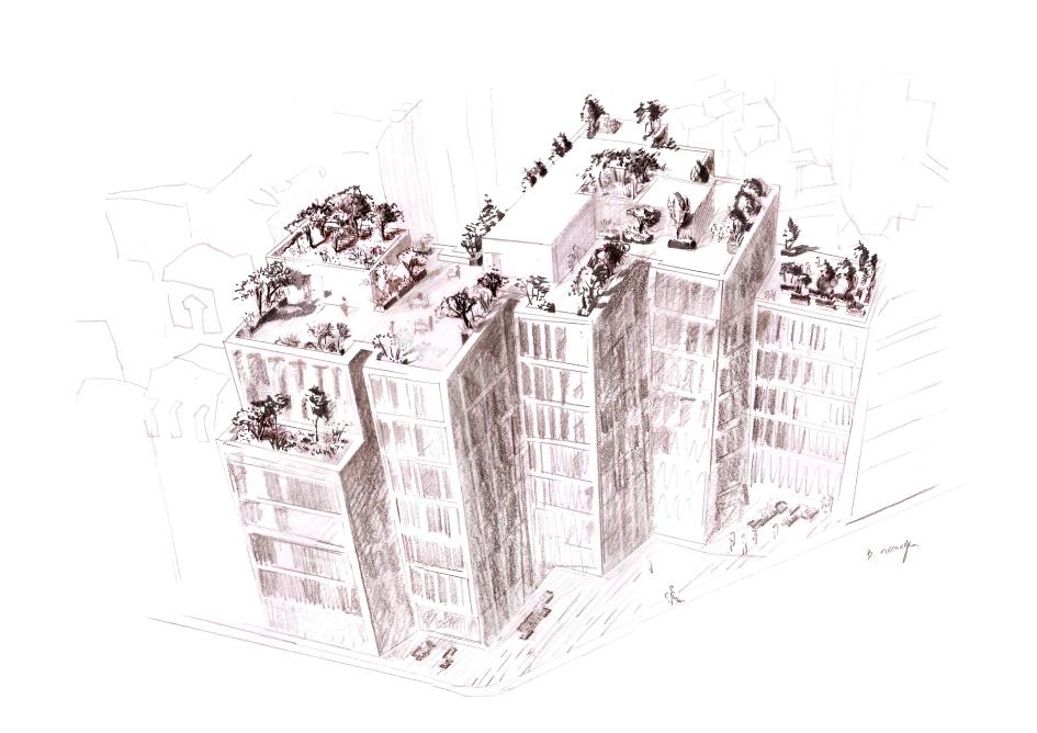 terrasse-raspail-2-copie